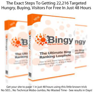 BINGY FULL DOWNLOAD The ULIMATE Bing Ranking Loophole